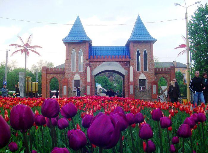 Парк Тюльпанов