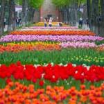 фото-с-www.restmap.com_.ua_